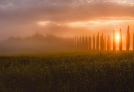 Photo wallpaper Tuscany Sun Rising